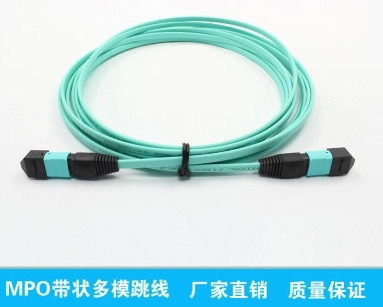 12 Fibers 10G OM4 Multimode 12 Strands MTP/MPO Female 0.35dB Trunk Cable, Polarity Type B, Bunch Aqua Fiber Optic Patch Cord,Fiber Optic Patch Cables